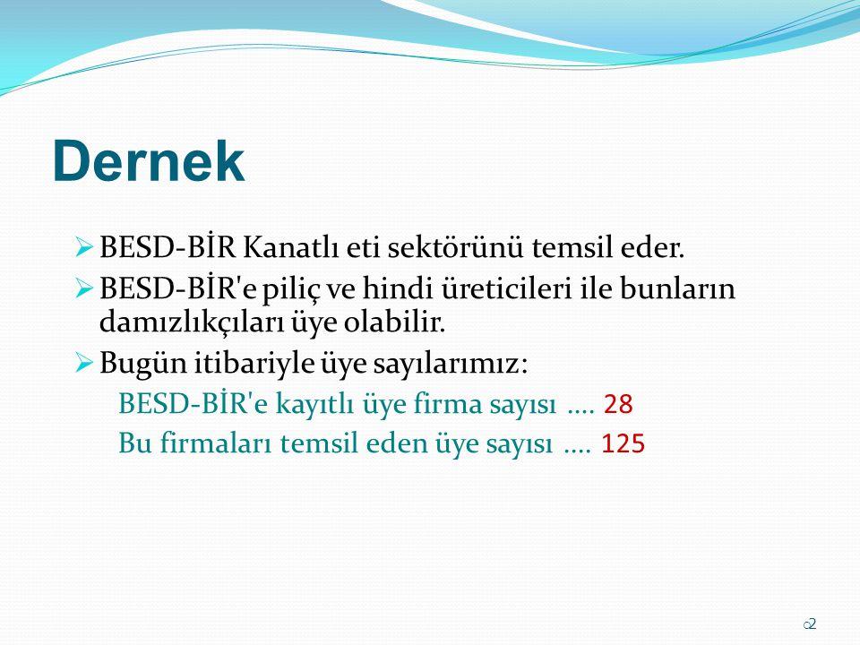 22 Dernek  BESD-BİR Kanatlı eti sektörünü temsil eder.  BESD-BİR'e piliç ve hindi üreticileri ile bunların damızlıkçıları üye olabilir.  Bugün it
