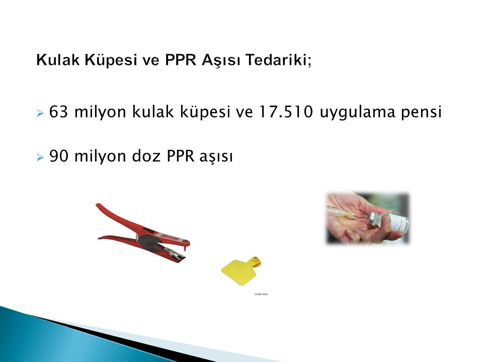  63 milyon kulak küpesi ve 17.510 uygulama pensi  90 milyon doz PPR aşısı