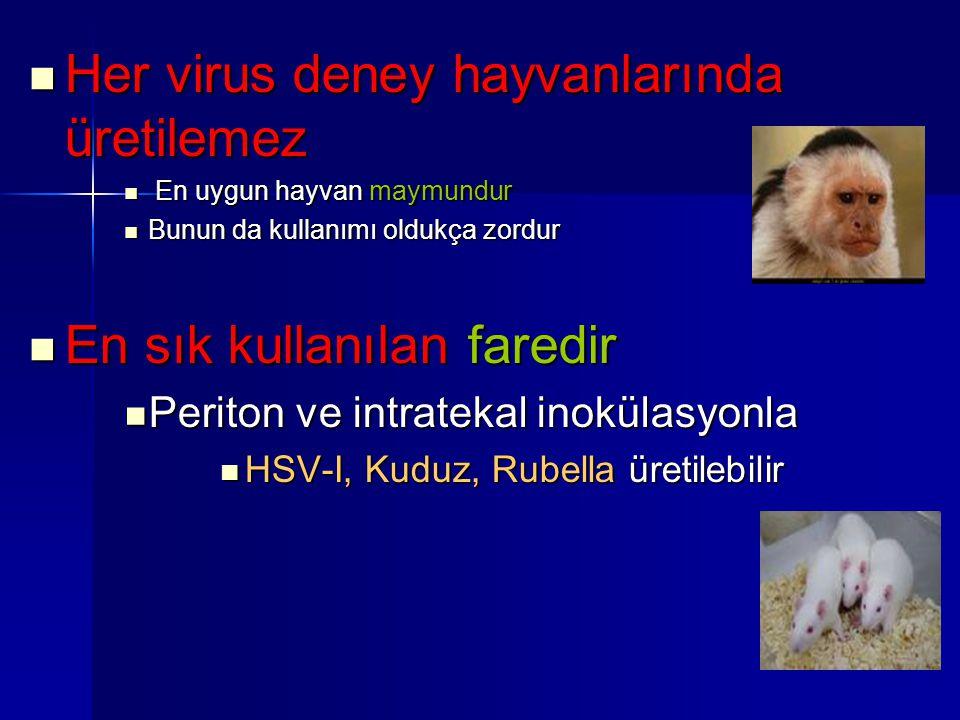 Her virus deney hayvanlarında üretilemez Her virus deney hayvanlarında üretilemez En uygun hayvan maymundur En uygun hayvan maymundur Bunun da kullanı