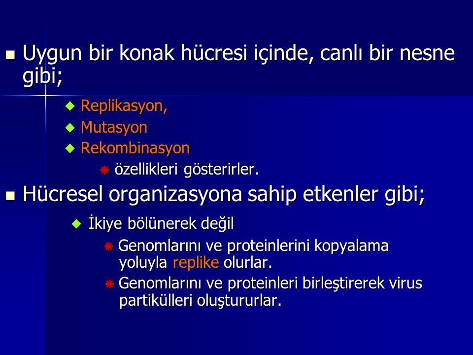 D) HÜCREDEN ÇIKIŞDA; OLGUNLAŞMA Viral partiküllerin enfeksiyöz formlara farklılaşma aşamasıdır Viral partiküllerin enfeksiyöz formlara farklılaşma aşamasıdır Bir araya gelmeyle olgunlaşma birbirlerinden ayırt edilemez Bir araya gelmeyle olgunlaşma birbirlerinden ayırt edilemez ANCAK; ANCAK; Bazı viruslarda ilk oluşan partikül enfeksiyöz değildir Bazı viruslarda ilk oluşan partikül enfeksiyöz değildir Sonradan viral proteaz enzimlerince olgunlaşma tamamlanır Sonradan viral proteaz enzimlerince olgunlaşma tamamlanır –Zarflı RNA viruslarından ; HIV HIV *Plazma zarında