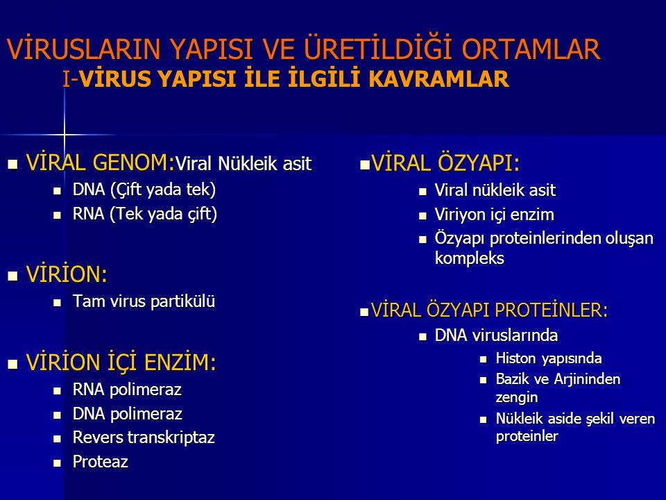 VİRAL KAPSİD VİRAL KAPSİD Viral özyapıyı çevreleyen protein tabaka Viral özyapıyı çevreleyen protein tabaka VİRAL NÜKLEOKAPSİD VİRAL NÜKLEOKAPSİD Viral nükleik asit Viral nükleik asit Kapsidin oluşturduğu yapı Kapsidin oluşturduğu yapı VİRAL KAPSOMER VİRAL KAPSOMER Kapsidin her bir yapısına denir Kapsidin her bir yapısına denir VİRAL ZARF VİRAL ZARF Bazı DNA ve RNA viruslarında nükleokapsidi çevreleyen viral membran yapısına denir Bazı DNA ve RNA viruslarında nükleokapsidi çevreleyen viral membran yapısına denir VİRAL PEPLOMER VİRAL PEPLOMER Zarfın antijenik yapısını oluşturan virusa özgül glikoprotein üniteleri Zarfın antijenik yapısını oluşturan virusa özgül glikoprotein üniteleri Hemaglutinin Hemaglutinin Nöraminidaz Nöraminidaz Füzyon proteinleri Füzyon proteinleri VİRAL TEGUMENT VİRAL TEGUMENT Viral kapsid ile viral zarf arasında kalan mesafeye denir Viral kapsid ile viral zarf arasında kalan mesafeye denir
