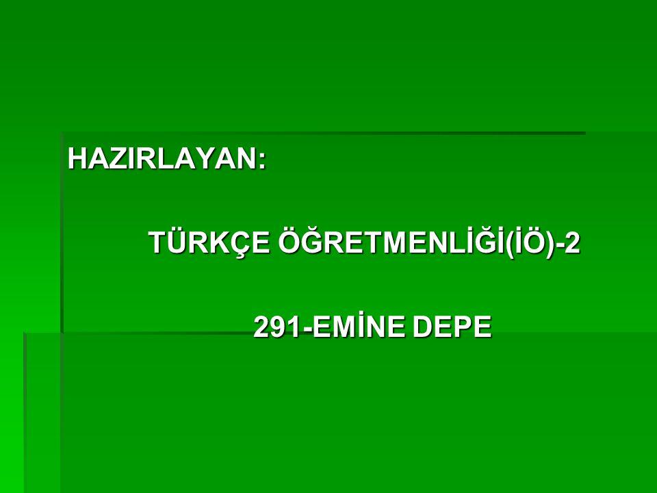 HAZIRLAYAN: TÜRKÇE ÖĞRETMENLİĞİ(İÖ)-2 TÜRKÇE ÖĞRETMENLİĞİ(İÖ)-2 291-EMİNE DEPE 291-EMİNE DEPE
