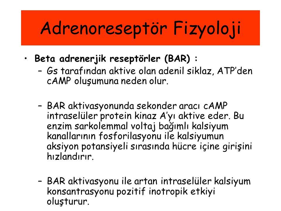 Adrenoreseptör Fizyoloji Beta adrenerjik reseptörler (BAR) : –Gs tarafından aktive olan adenil siklaz, ATP'den cAMP oluşumuna neden olur. –BAR aktivas