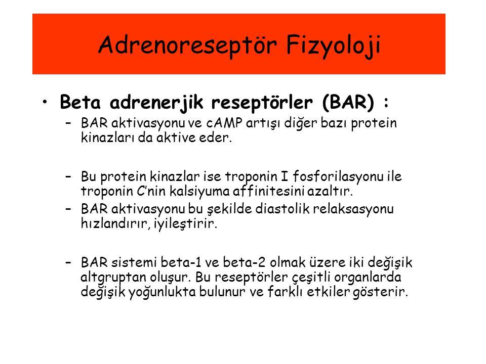 Beta adrenerjik reseptörler (BAR) : –BAR aktivasyonu ve cAMP artışı diğer bazı protein kinazları da aktive eder. –Bu protein kinazlar ise troponin I f