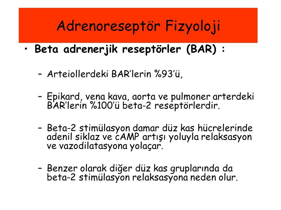 Beta adrenerjik reseptörler (BAR) : –Arteiollerdeki BAR'lerin %93'ü, –Epikard, vena kava, aorta ve pulmoner arterdeki BAR'lerin %100'ü beta-2 reseptör