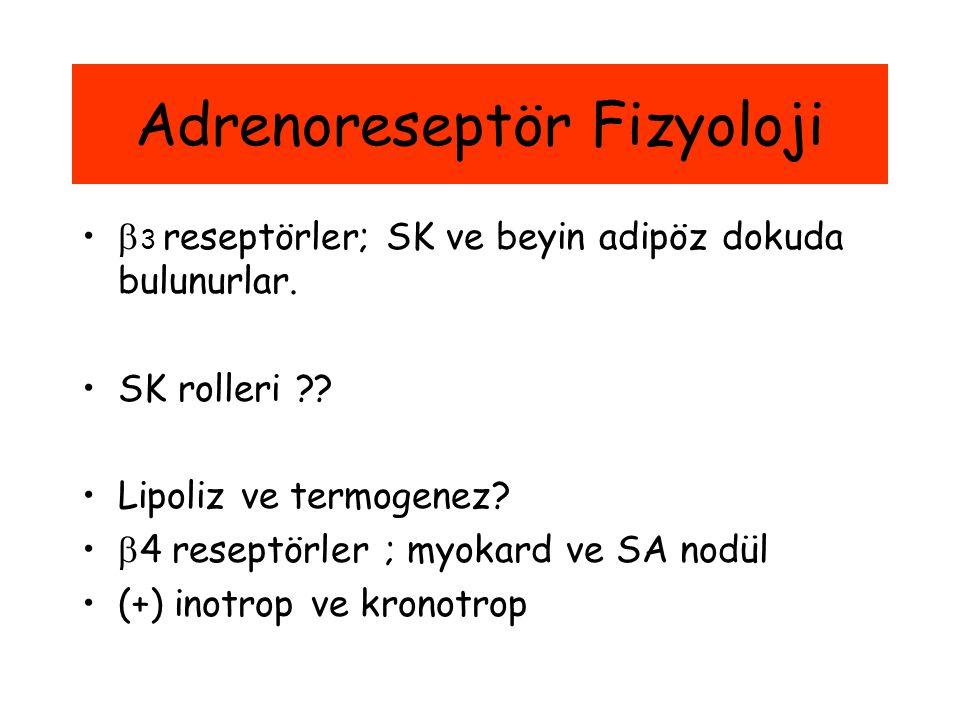 Adrenoreseptör Fizyoloji  3 reseptörler; SK ve beyin adipöz dokuda bulunurlar. SK rolleri ?? Lipoliz ve termogenez?  4 reseptörler ; myokard ve SA n