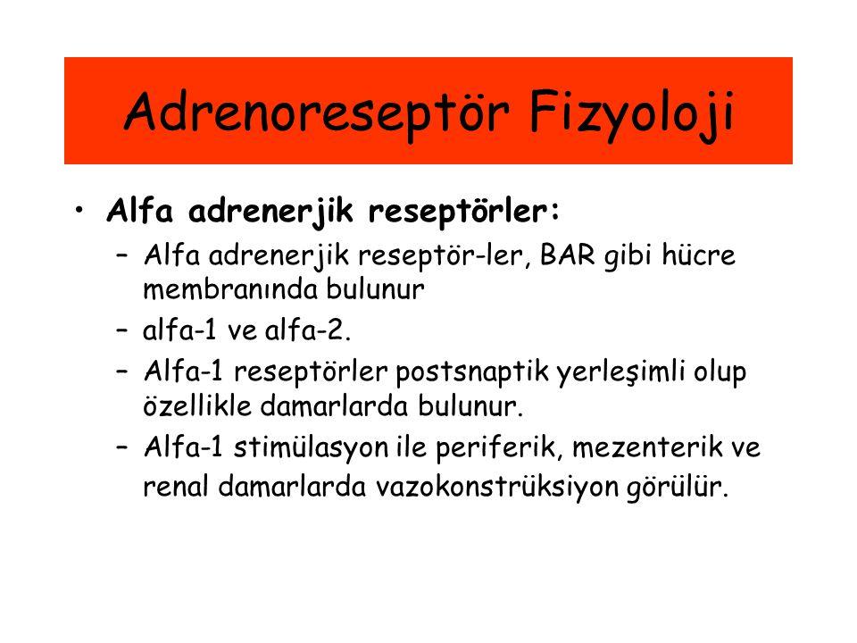 Alfa adrenerjik reseptörler: –Alfa adrenerjik reseptör-ler, BAR gibi hücre membranında bulunur –alfa-1 ve alfa-2. –Alfa-1 reseptörler postsnaptik yerl