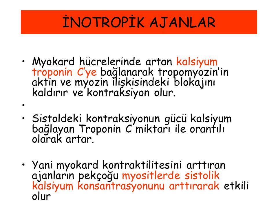 İNOTROPİK AJANLAR Myokard hücrelerinde artan kalsiyum troponin C'ye bağlanarak tropomyozin'in aktin ve myozin ilişkisindeki blokajını kaldırır ve kont