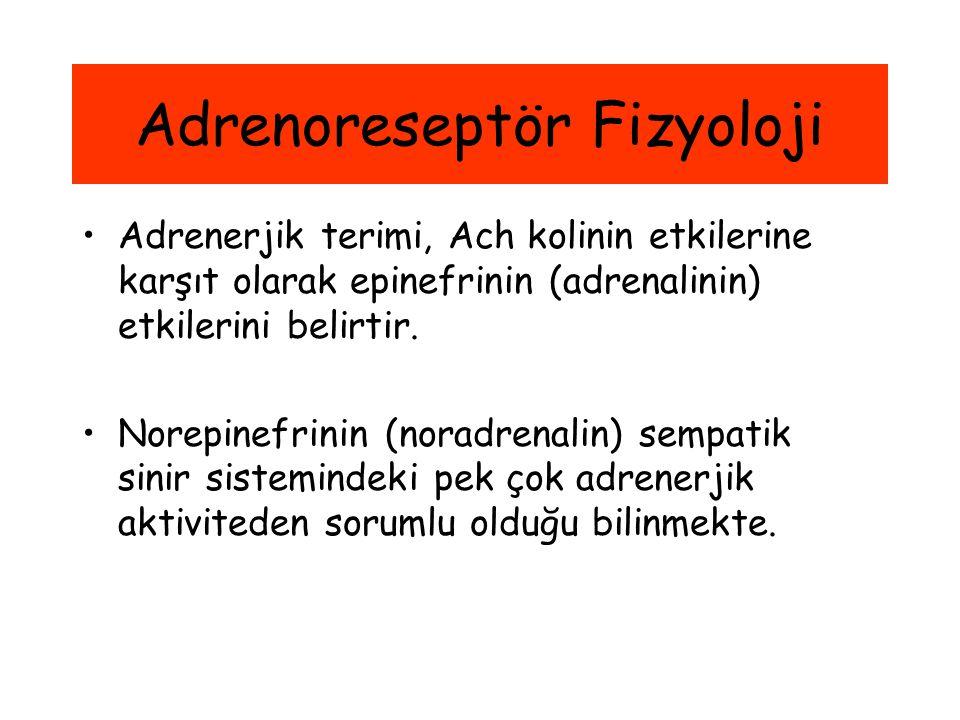 Adrenoreseptör Fizyoloji Adrenerjik terimi, Ach kolinin etkilerine karşıt olarak epinefrinin (adrenalinin) etkilerini belirtir. Norepinefrinin (noradr