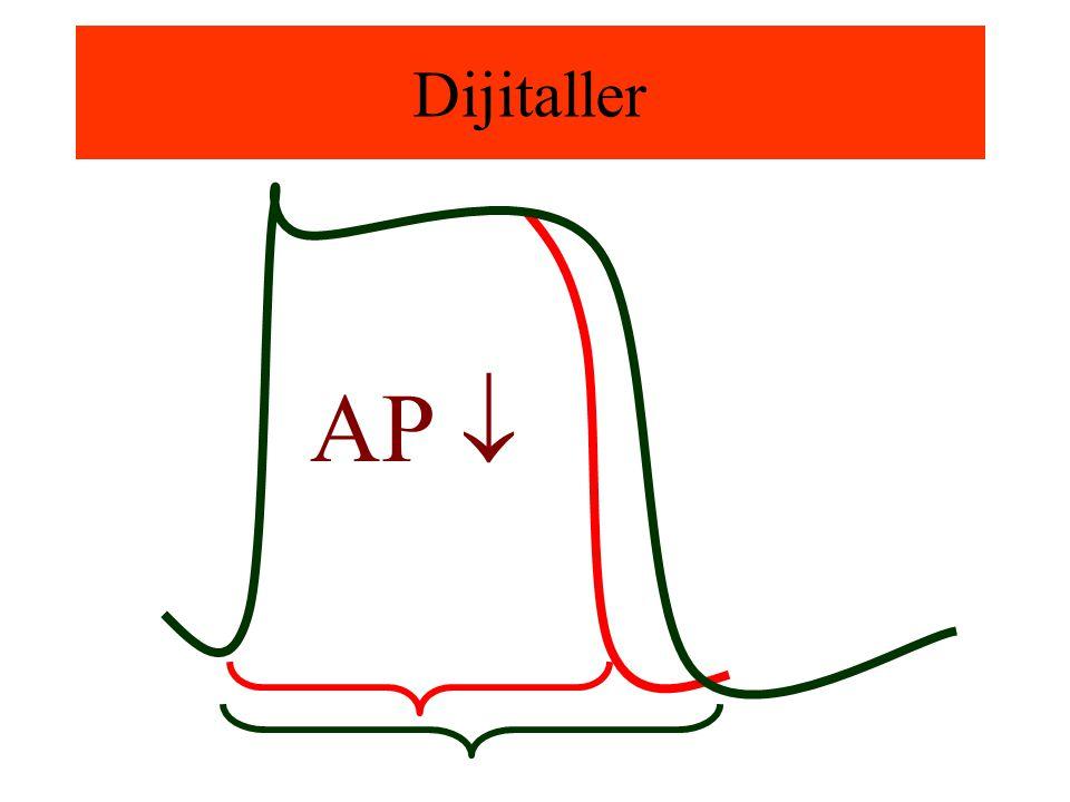 Dijitaller AP 