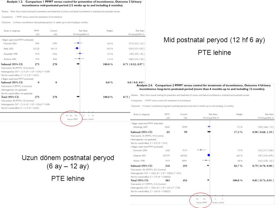 Mid postnatal peryod (12 hf 6 ay) PTE lehine Uzun dönem postnatal peryod (6 ay – 12 ay) PTE lehine