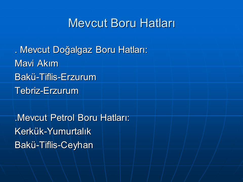 Mevcut Boru Hatları. Mevcut Doğalgaz Boru Hatları: Mavi Akım Bakü-Tiflis-ErzurumTebriz-Erzurum.Mevcut Petrol Boru Hatları: Kerkük-YumurtalıkBakü-Tifli
