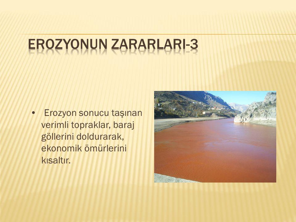 Erozyon sonucu taşınan verimli topraklar, baraj göllerini doldurarak, ekonomik ömürlerini kısaltır.