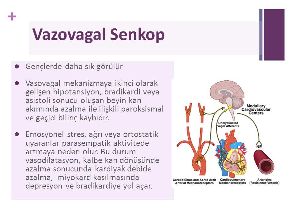 + Vazovagal Senkop Gençlerde daha sık görülür Vasovagal mekanizmaya ikinci olarak gelişen hipotansiyon, bradikardi veya asistoli sonucu oluşan beyin k