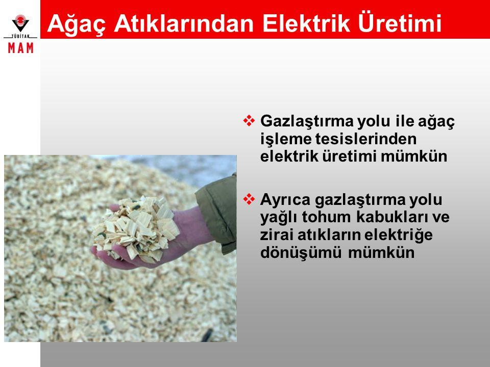 Ağaç Atıklarından Elektrik Üretimi  Gazlaştırma yolu ile ağaç işleme tesislerinden elektrik üretimi mümkün  Ayrıca gazlaştırma yolu yağlı tohum kabu
