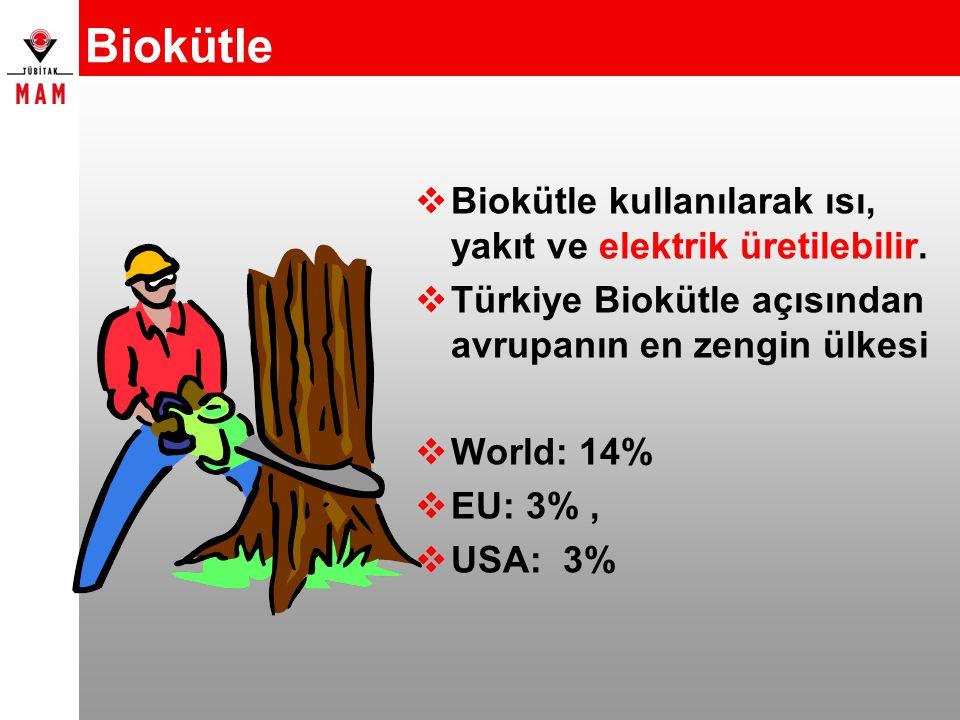 Biokütle  Biokütle kullanılarak ısı, yakıt ve elektrik üretilebilir.  Türkiye Biokütle açısından avrupanın en zengin ülkesi  World: 14%  EU: 3%, 