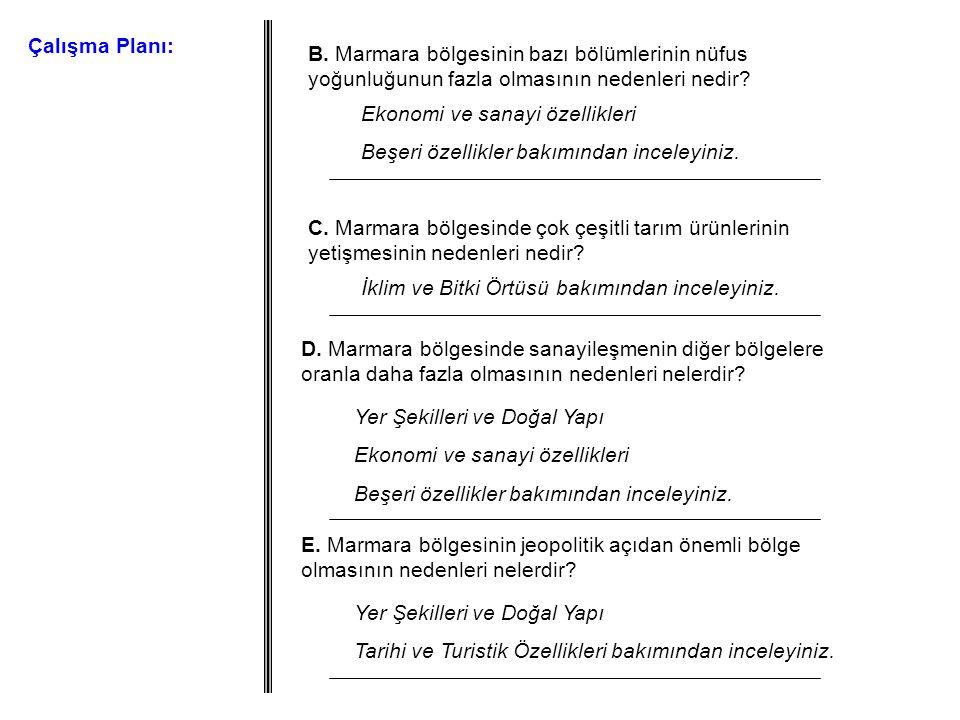 Çalışma Planı: B. Marmara bölgesinin bazı bölümlerinin nüfus yoğunluğunun fazla olmasının nedenleri nedir? Ekonomi ve sanayi özellikleri Beşeri özelli