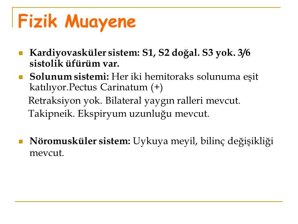 Fizik Muayene Kardiyovasküler sistem: S1, S2 doğal. S3 yok. 3/6 sistolik üfürüm var. Solunum sistemi: Her iki hemitoraks solunuma eşit katılıyor.Pectu