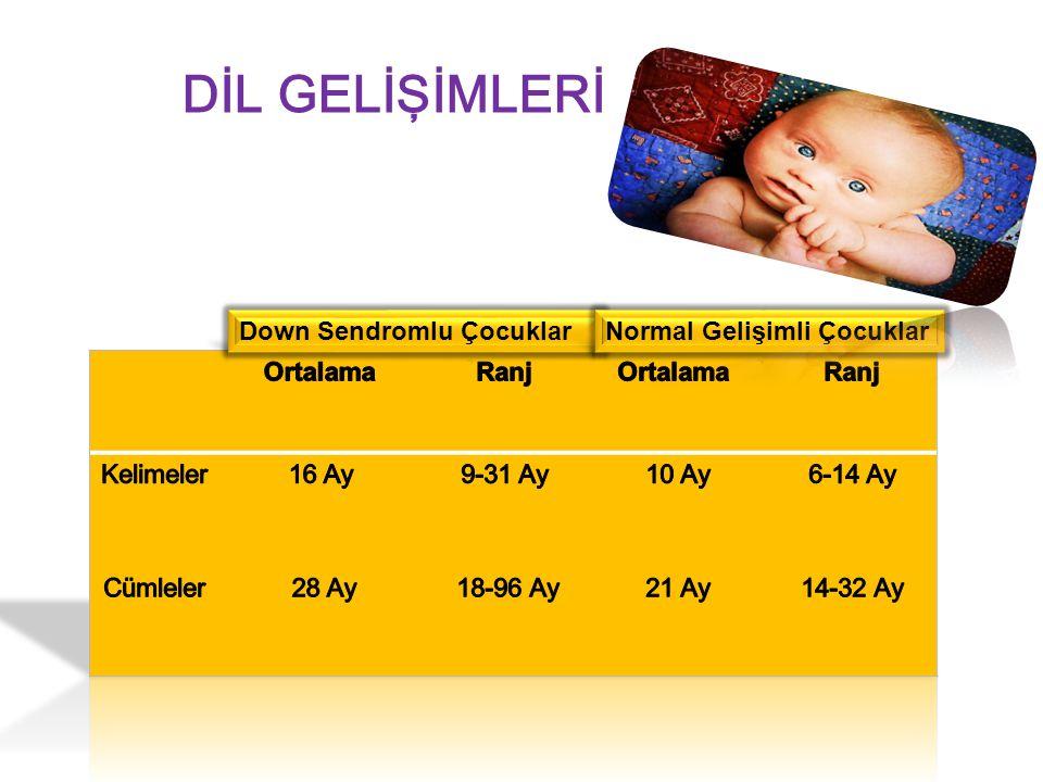 DİL GELİŞİMLERİ