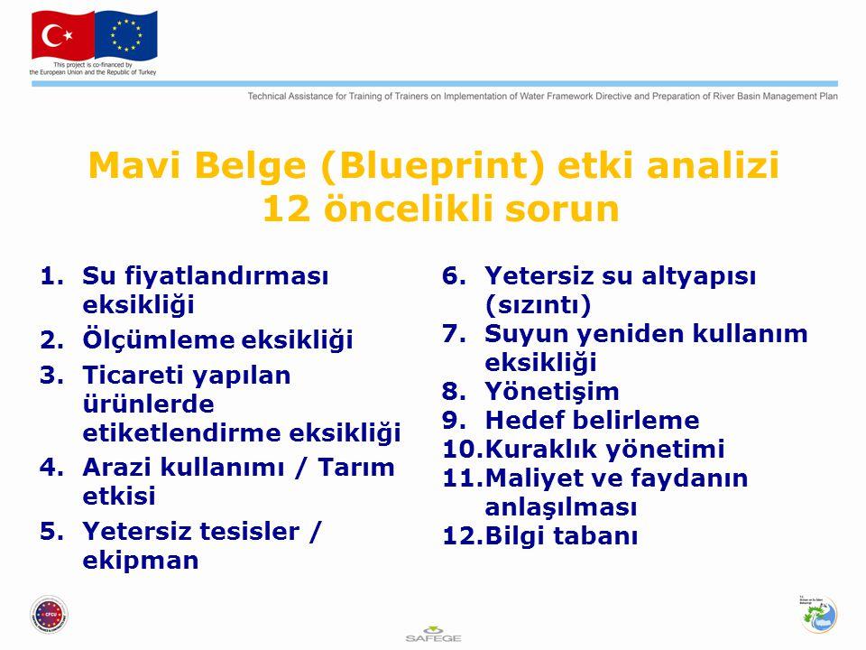 Mavi Belge (Blueprint) etki analizi 12 öncelikli sorun 1.Su fiyatlandırması eksikliği 2.Ölçümleme eksikliği 3.Ticareti yapılan ürünlerde etiketlendirm