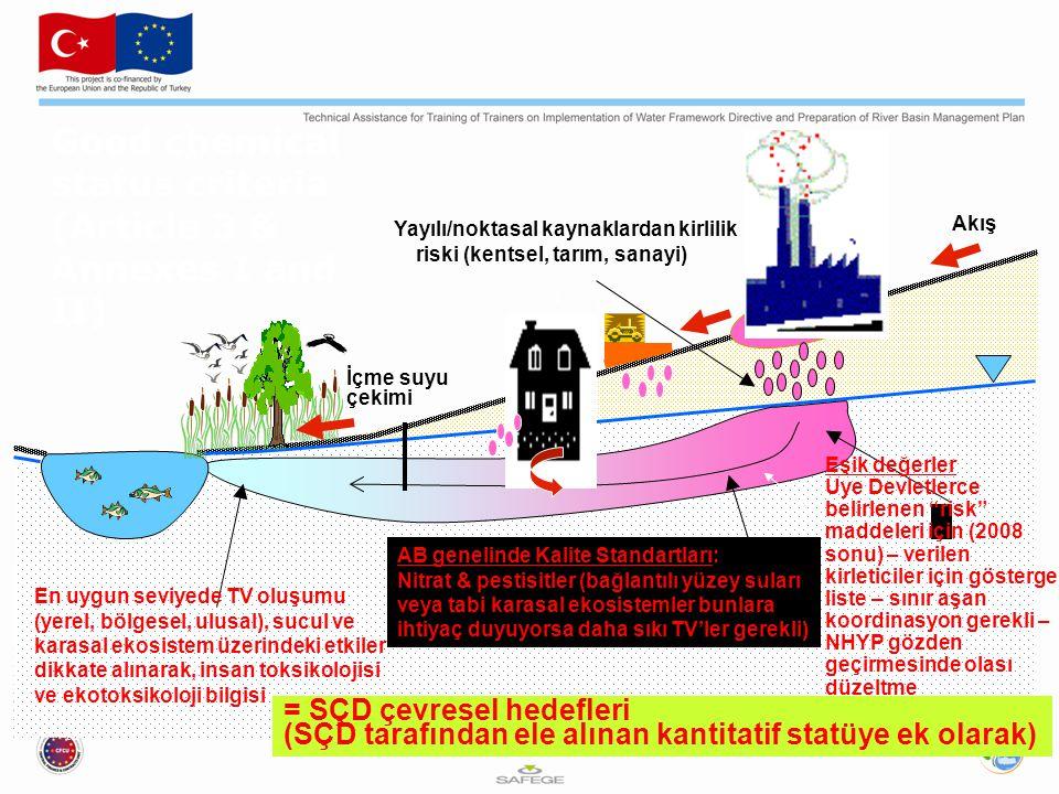 16 Yayılı/noktasal kaynaklardan kirlilik riski (kentsel, tarım, sanayi) AB genelinde Kalite Standartları: Nitrat & pestisitler (bağlantılı yüzey sular