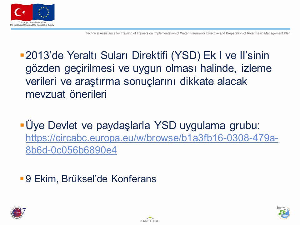  2013'de Yeraltı Suları Direktifi (YSD) Ek I ve II'sinin gözden geçirilmesi ve uygun olması halinde, izleme verileri ve araştırma sonuçlarını dikkate