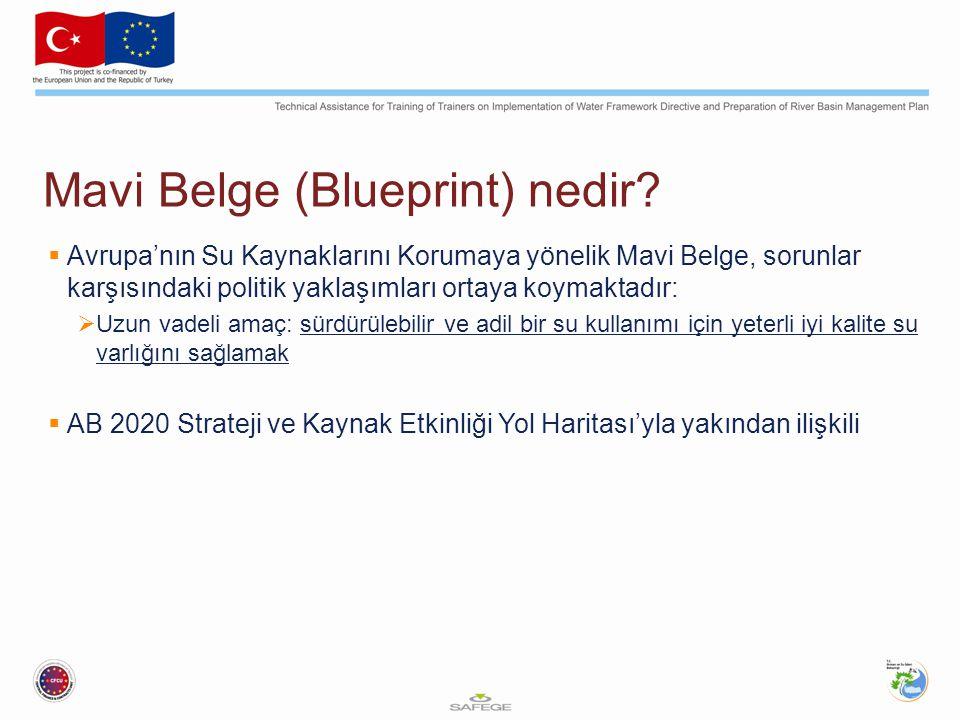 Mavi Belge (Blueprint) hedefleri GönüllüDüzenlemeŞartFon Su hesapları, e-akış & hedef belirleme uygulamaları 2014'e kadar WA / E-akış ve hedef belirleme konularında CIS Rehberliği Taşkın riski azaltılmasıYeşil altyapı aracılığıyla Avrupa Taşkın Farkındalık Sistemi 2015'e kadar Taşkın Risk Yönetim Planları Kuraklık riski azaltılmasıYeşil altyapı aracılığıyla Avrupa Taşkın 2013-2014'de EDO SÇD gereklerinin yürütmesi (devam ediyor) Maliyet ve faydalar için daha iyi hesaplama 2014'e kadar CIS Rehberliği Daha iyi bilgi tabanı2015'e kadar WISE güncellemesi Gelişen ülkelere destek Kirlilikle mücadeleEcza ürünleri & çevre raporu 2013 WFD, EQS/PSD, NID, UWWTD, IED … hedefleri yürütmesi Yatak kesenÇevre ve Tarım konusunda EIP, 2013 itibariyle WFD, EQS/PSD, NID, UWWTD, IED'nin genel olarak yürütmesi Olası Avrupa Dönem Tavsiyeleri 2013 CAP, S&C Fonları & EIB borçları