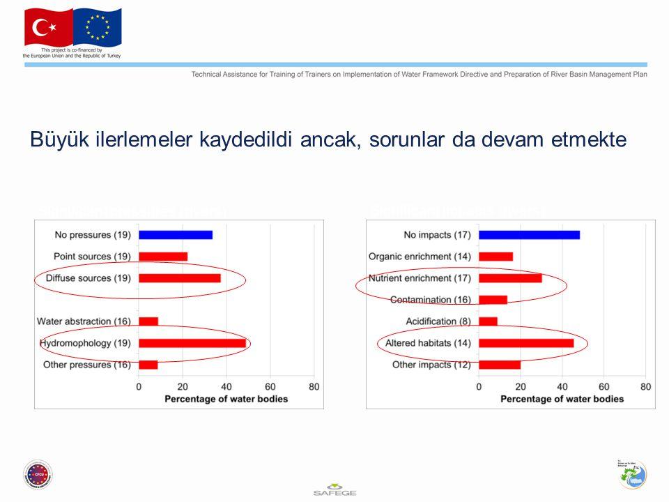 Büyük ilerlemeler kaydedildi ancak, sorunlar da devam etmekte Significant pressures (rivers) Significant impacts (rivers) Source: EEA