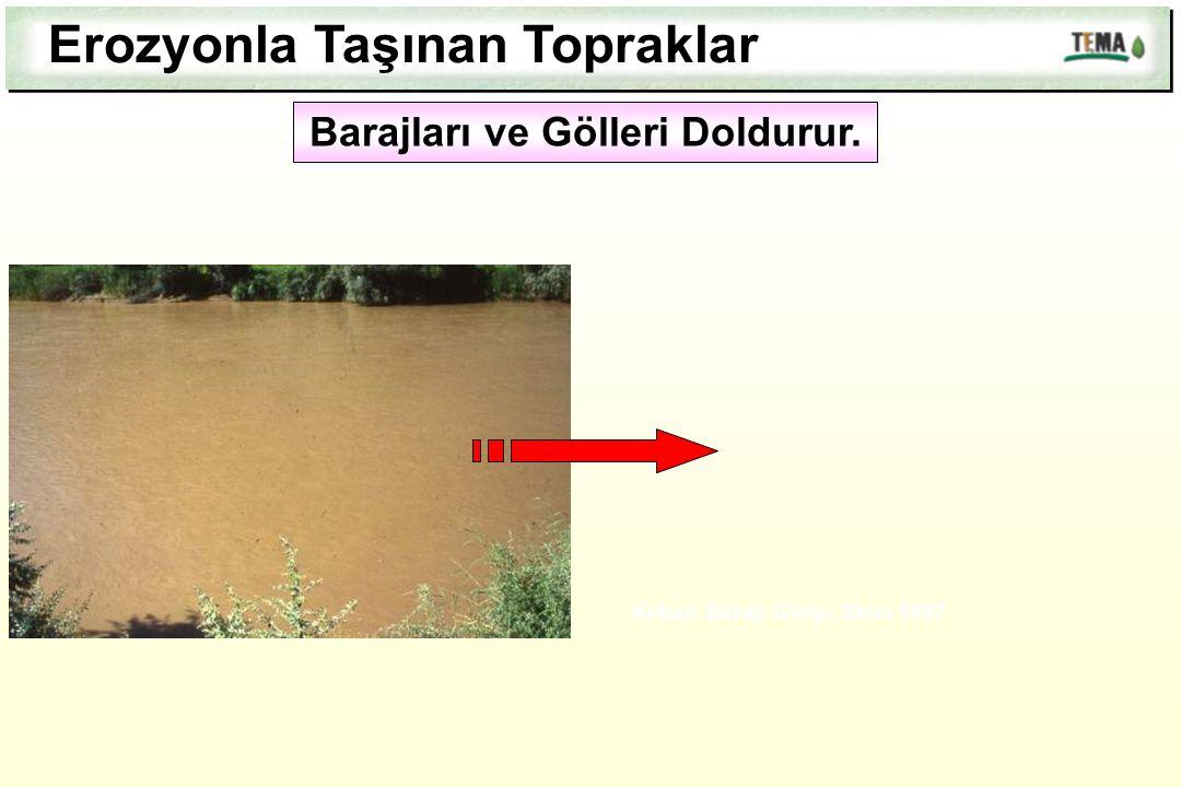 Erozyonla Taşınan Topraklar Keban Barajı Girişi, Ekim 1997 Barajları ve Gölleri Doldurur.