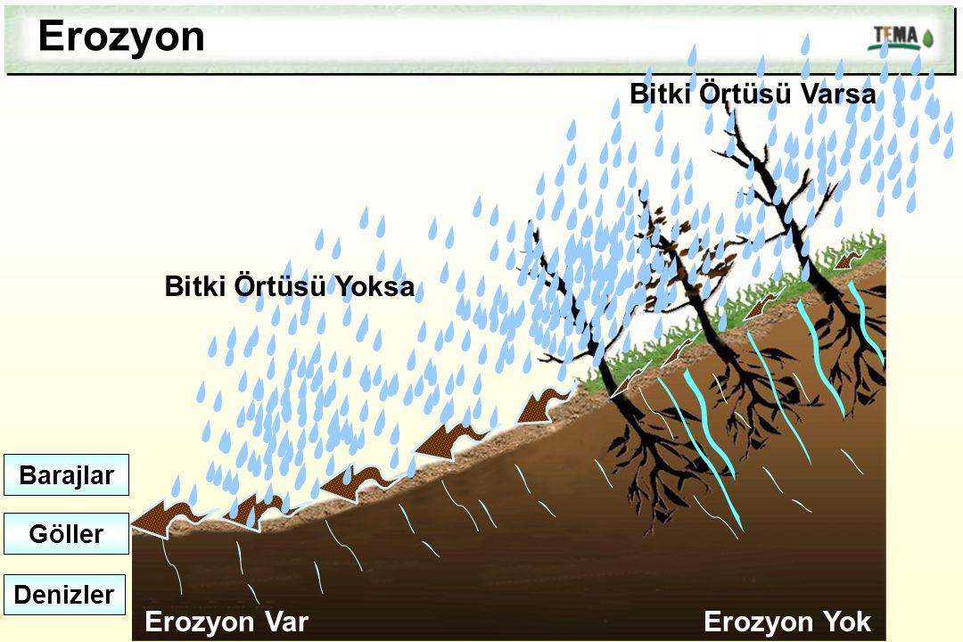 Erozyon Bitki Örtüsü Yoksa Erozyon Var Bitki Örtüsü Varsa Erozyon Yok Barajlar Göller Denizler