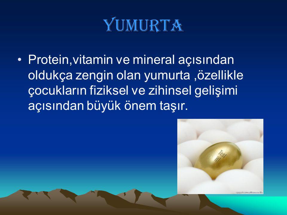 YUMURTA Protein,vitamin ve mineral açısından oldukça zengin olan yumurta,özellikle çocukların fiziksel ve zihinsel gelişimi açısından büyük önem taşır