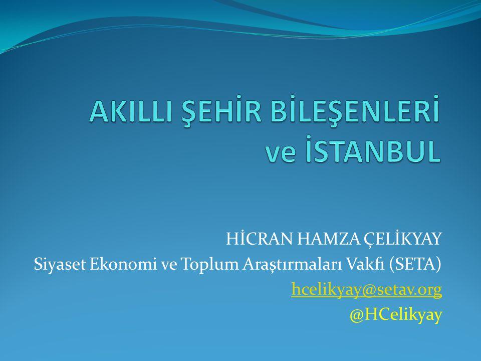 HİCRAN HAMZA ÇELİKYAY Siyaset Ekonomi ve Toplum Araştırmaları Vakfı (SETA) hcelikyay@setav.org @HCelikyay