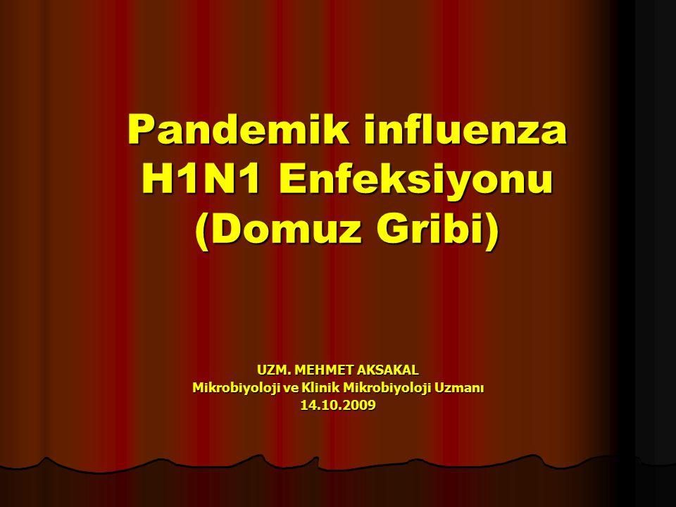 Pandemik influenza H1N1 Enfeksiyonu (Domuz Gribi) UZM.