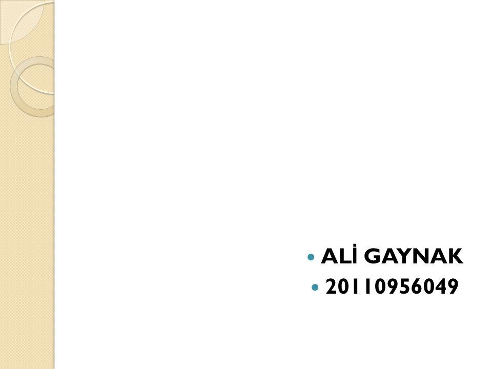 AL İ GAYNAK 20110956049