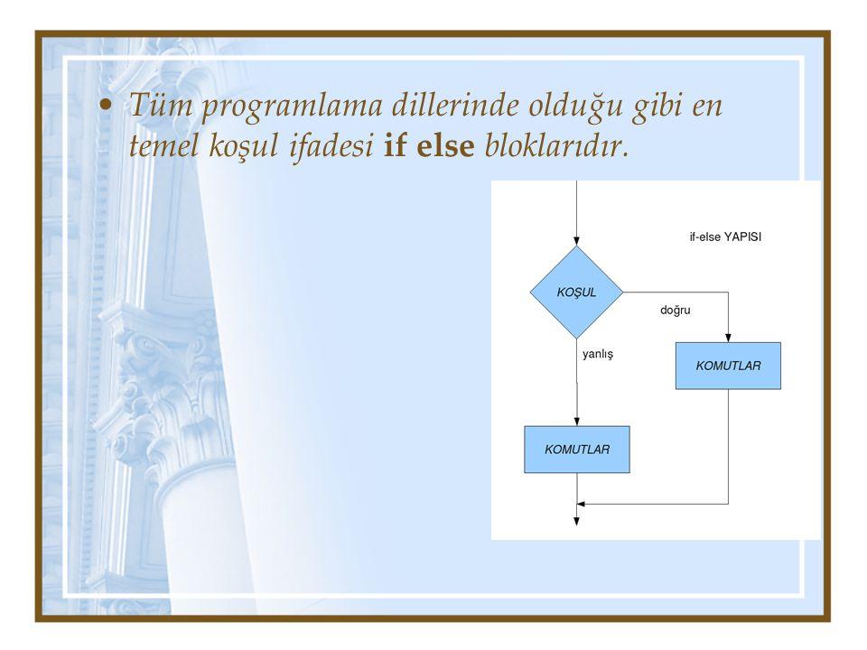 Tüm programlama dillerinde olduğu gibi en temel koşul ifadesi if else bloklarıdır.