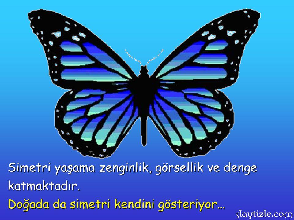 Simetri yaşama zenginlik, görsellik ve denge katmaktadır. Doğada da simetri kendini gösteriyor…