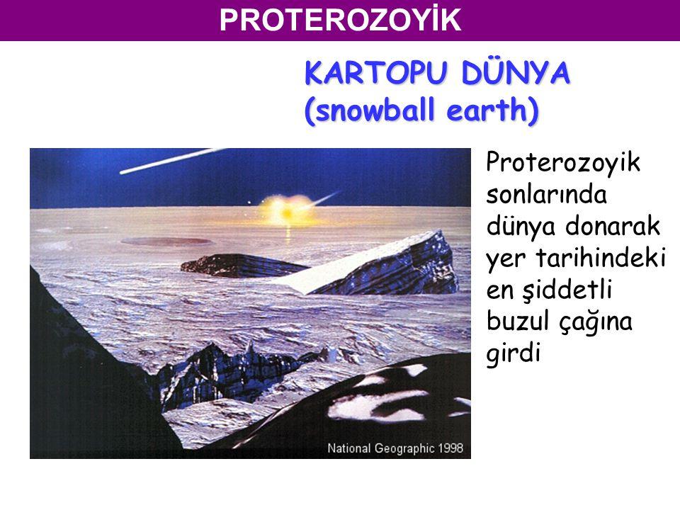 PROTEROZOYİK Proterozoyik sonlarında dünya donarak yer tarihindeki en şiddetli buzul çağına girdi KARTOPU DÜNYA (snowball earth)