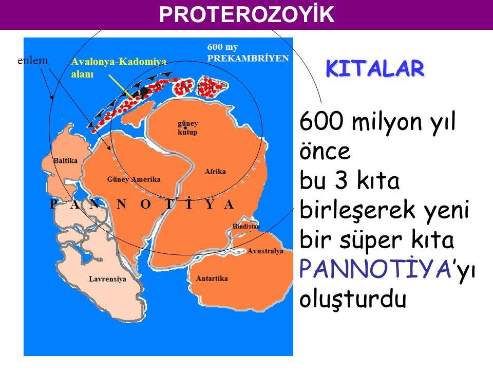 KITALAR P A N N O T İ Y A enlem PROTEROZOYİK 600 milyon yıl önce bu 3 kıta birleşerek yeni bir süper kıta PANNOTİYA'yı oluşturdu