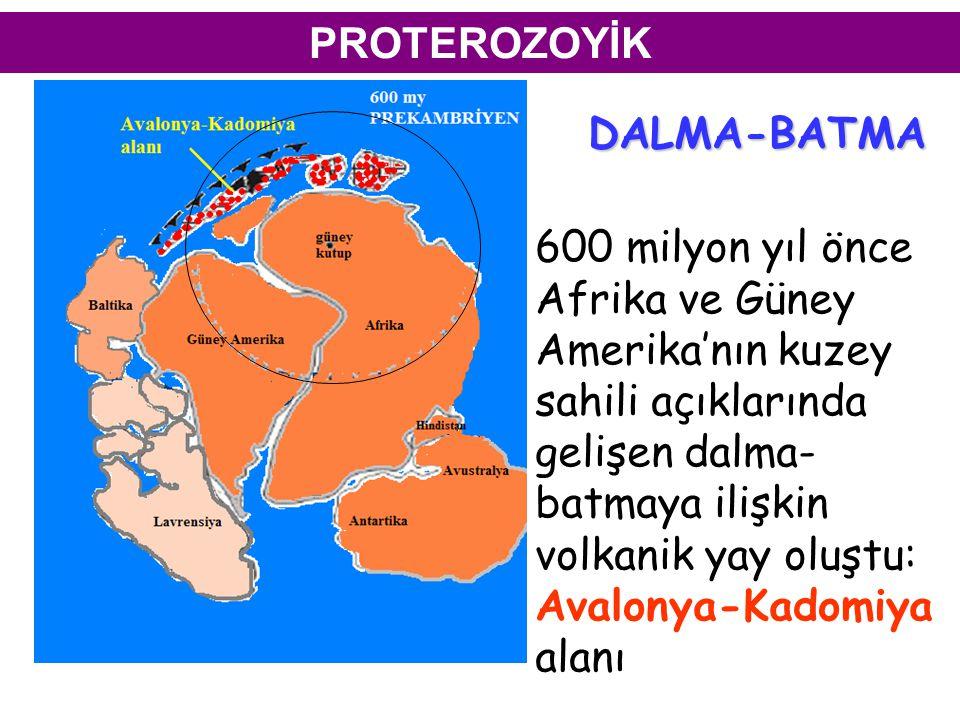 PROTEROZOYİK 600 milyon yıl önce Afrika ve Güney Amerika'nın kuzey sahili açıklarında gelişen dalma- batmaya ilişkin volkanik yay oluştu: Avalonya-Kadomiya alanı DALMA-BATMA