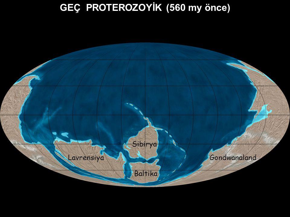 GEÇ PROTEROZOYİK (560 my önce) Lavrensiya Sibirya Baltika Gondwanaland