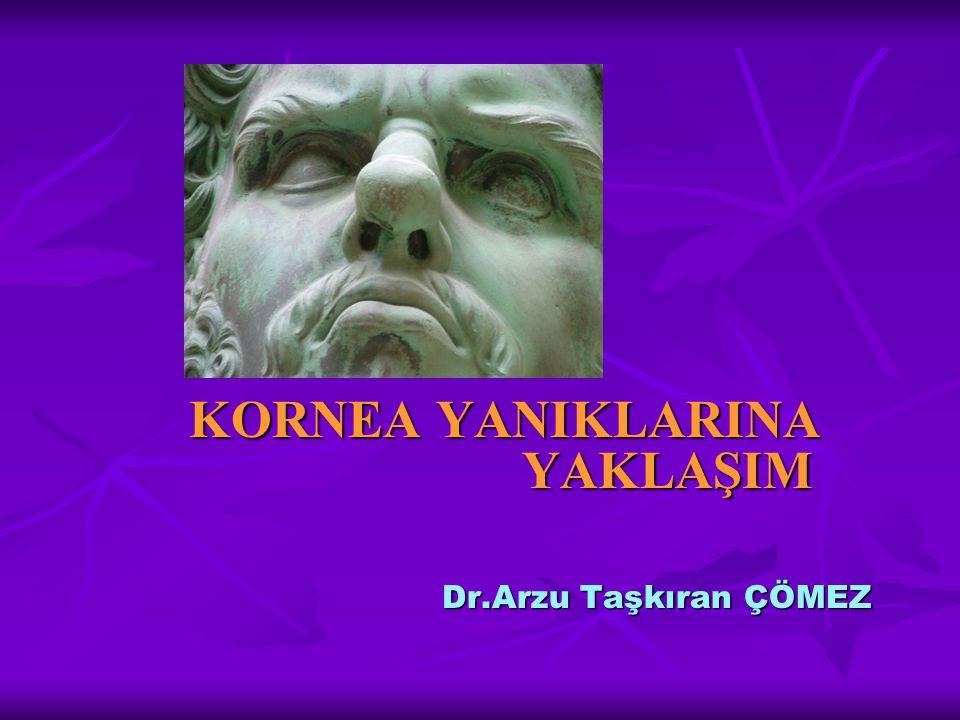 Göz yanıkları Sklera Sklera Kornea Kornea Konjonktiva Konjonktiva Göz kapakları Göz kapakları