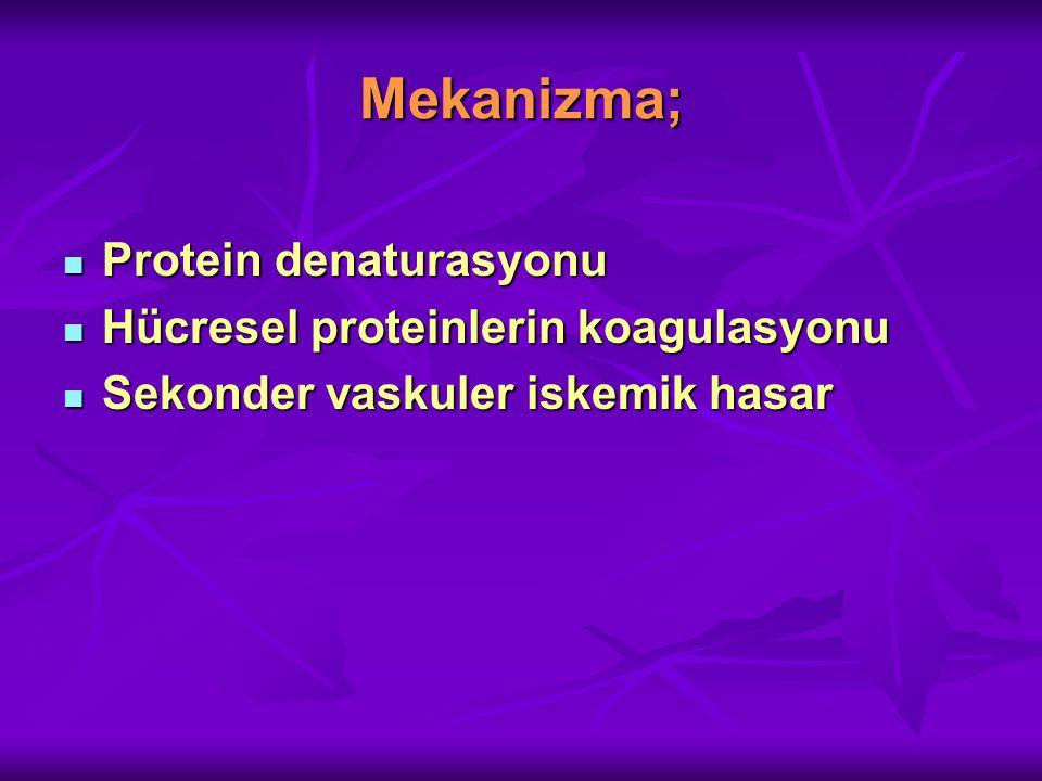 Mekanizma; Protein denaturasyonu Protein denaturasyonu Hücresel proteinlerin koagulasyonu Hücresel proteinlerin koagulasyonu Sekonder vaskuler iskemik hasar Sekonder vaskuler iskemik hasar