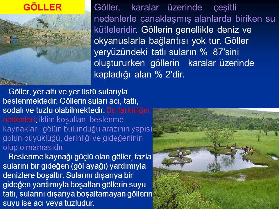 Göller, karalar üzerinde çeşitli nedenlerle çanaklaşmış alanlarda biriken su kütleleridir.