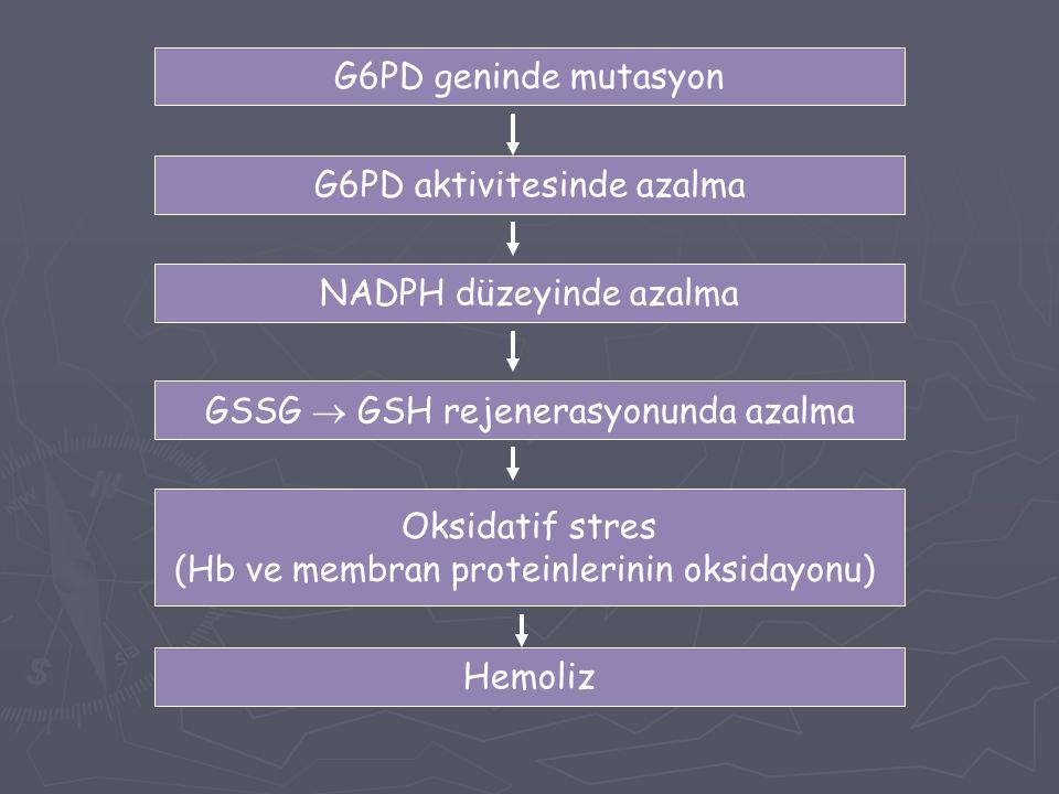 G6PD geninde mutasyon G6PD aktivitesinde azalma NADPH düzeyinde azalma GSSG  GSH rejenerasyonunda azalma Hemoliz Oksidatif stres (Hb ve membran prote