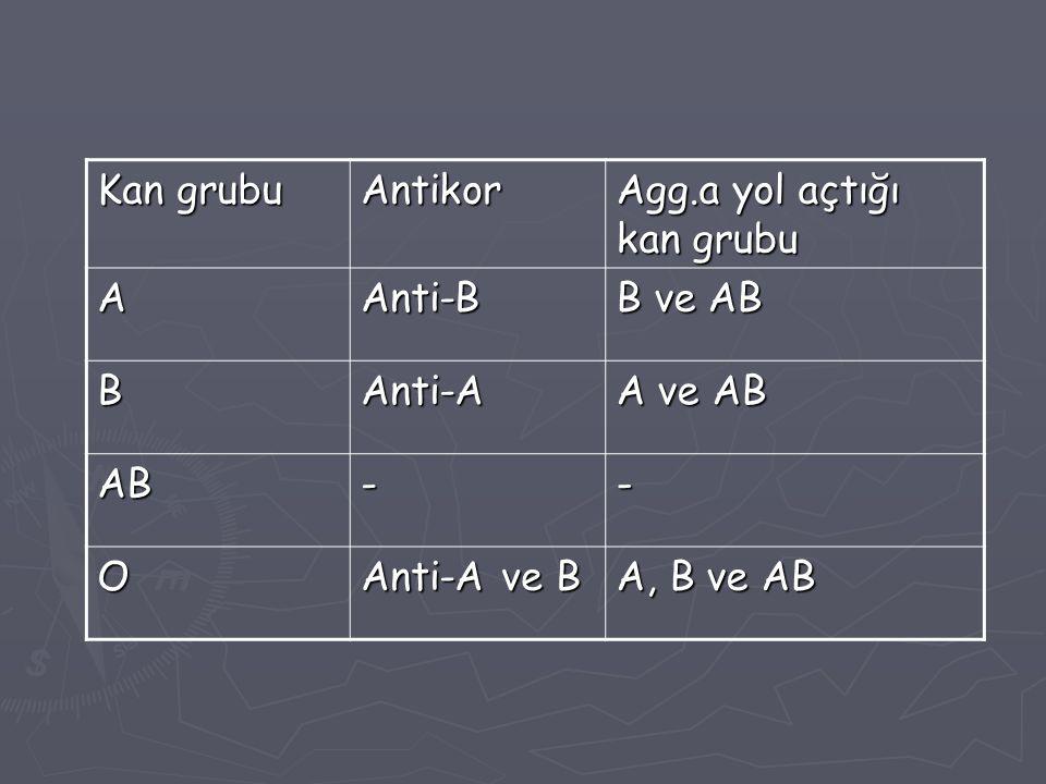 Kan grubu Antikor Agg.a yol açtığı kan grubu AAnti-B B ve AB BAnti-A A ve AB AB-- O Anti-A ve B A, B ve AB