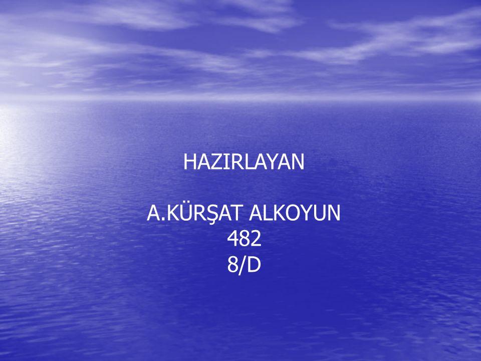 HAZIRLAYAN A.KÜRŞAT ALKOYUN 482 8/D