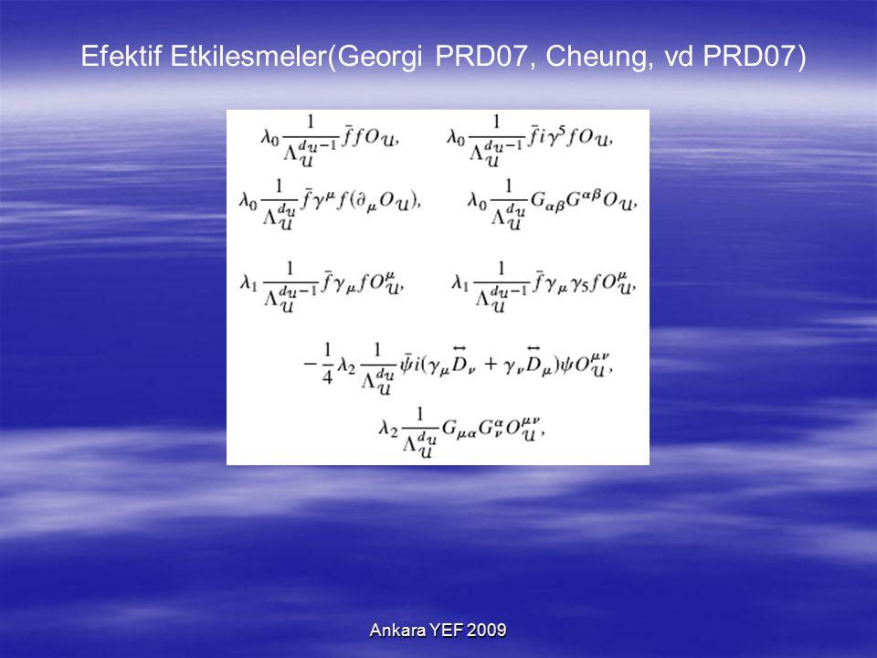 Ankara YEF 2009 Efektif Etkilesmeler(Georgi PRD07, Cheung, vd PRD07)