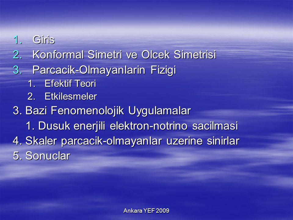 Ankara YEF 2009 1.Giris 2.Konformal Simetri ve Olcek Simetrisi 3.Parcacik-Olmayanlarin Fizigi 1.Efektif Teori 2.Etkilesmeler 3.