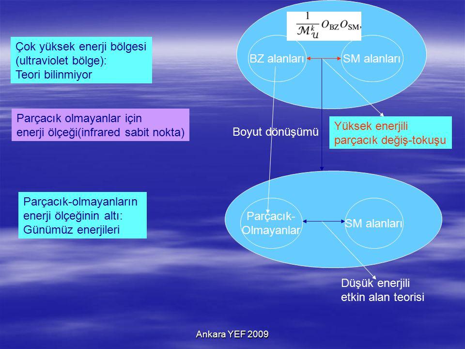 BZ alanlarıSM alanları Çok yüksek enerji bölgesi (ultraviolet bölge): Teori bilinmiyor Yüksek enerjili parçacık değiş-tokuşu Parçacık olmayanlar için enerji ölçeği(infrared sabit nokta) Parçacık-olmayanların enerji ölçeğinin altı: Günümüz enerjileri Parçacık- Olmayanlar SM alanları Boyut dönüşümü Düşük enerjili etkin alan teorisi