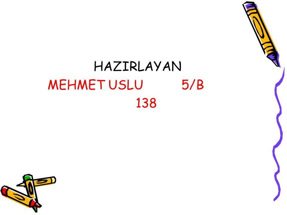 HAZIRLAYAN MEHMET USLU 5/B 138